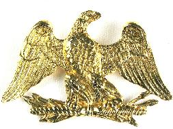 Accessocraft eagle pin